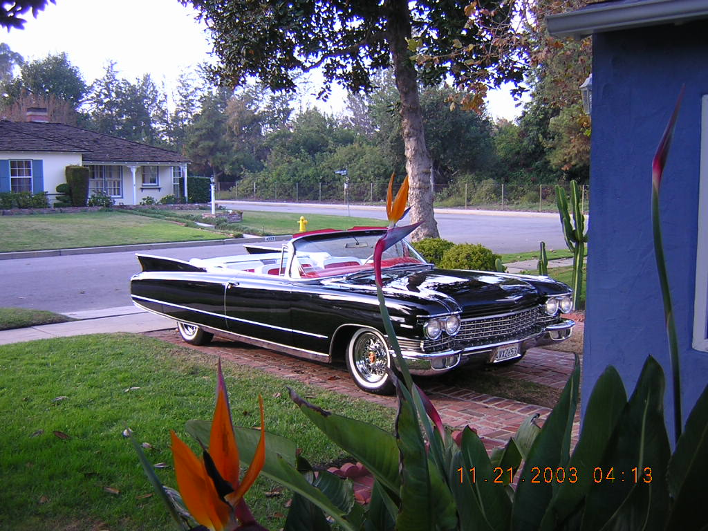 the HOTTEST 1959 Cadillac